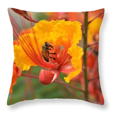 Throw Pillow featuring the photograph Bee Pollinating Bird Of Paradise by James Fannin