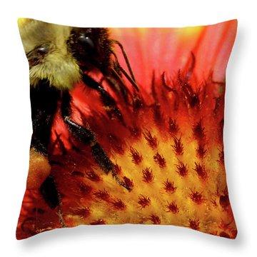 Bee Red Flower Throw Pillow