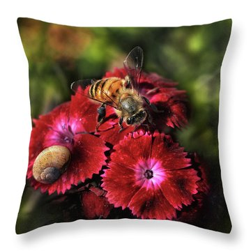 Bee Searching For Pollen Throw Pillow by Stephan Grixti