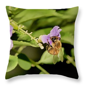 Bee Taking Pollen Throw Pillow