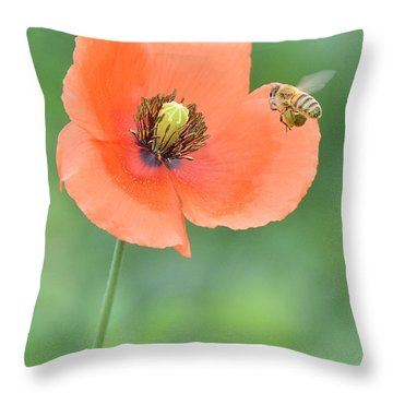 Bee To Poppy Throw Pillow by Alan Lenk