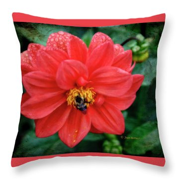 Throw Pillow featuring the photograph Bee-utiful by Joan Bertucci