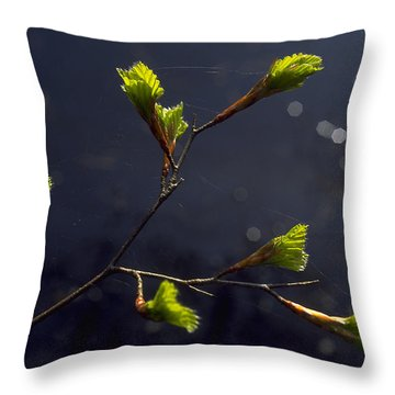 Beech Buds Throw Pillow