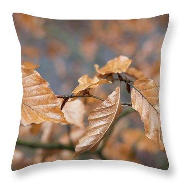 Beech Garland 3 Throw Pillow