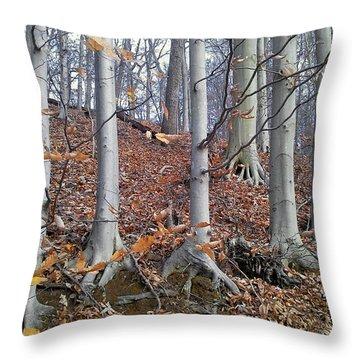 Brand new Melinda Blackman - Throw Pillows for Sale DP09