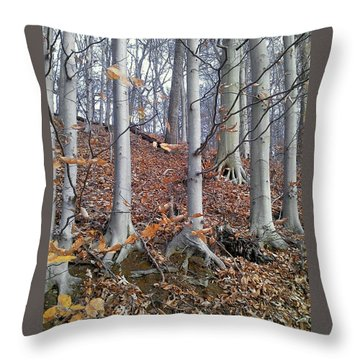 Beech Trees Throw Pillow