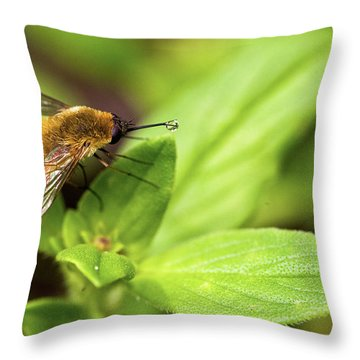 Beefly Throw Pillow by Christopher Holmes