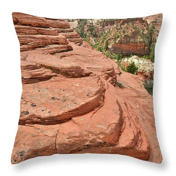 Beehives Above Throw Pillow