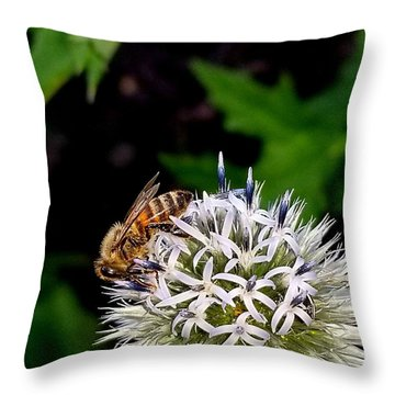 Beeing Seen Throw Pillow