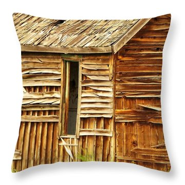 Seen Better Days Throw Pillow by Michele Penner