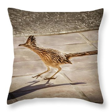 Greater Roadrunner Photographs Throw Pillows