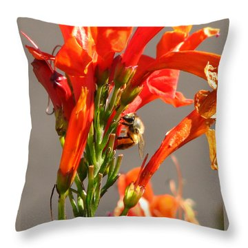 Day In A Life Of A Bee Throw Pillow