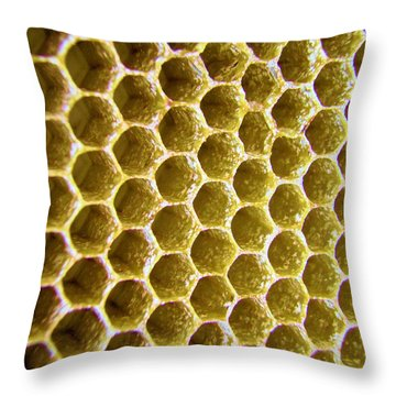 Bee's Home Throw Pillow