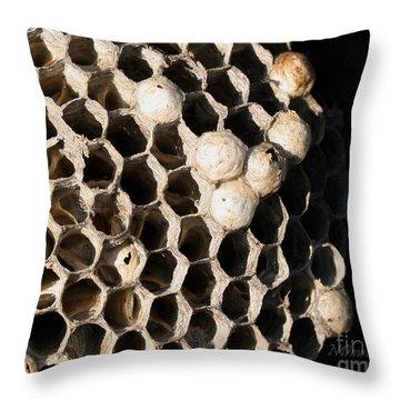 Bee's Nest Throw Pillow