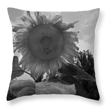 Throw Pillow featuring the digital art Bees On A Sunflower by Chris Flees