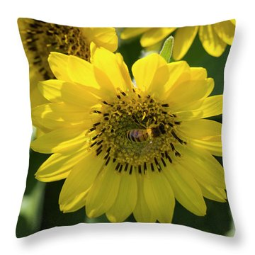Bee's Work Is Never Done Throw Pillow