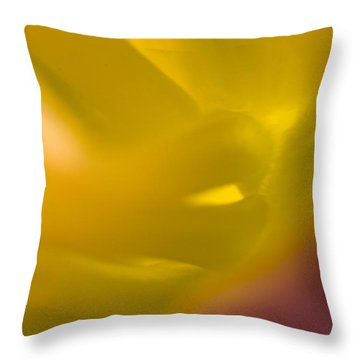 Before Throw Pillow