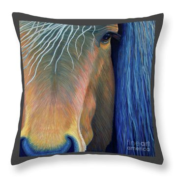 Before Sundown Throw Pillow