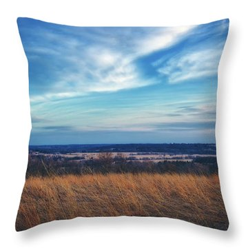 Throw Pillow featuring the photograph Before Sunset At Retzer Nature Center - Waukesha by Jennifer Rondinelli Reilly - Fine Art Photography