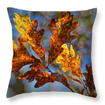 Throw Pillow featuring the photograph Before The Blower by Robert L Jackson