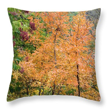 Before The Fall Throw Pillow by Deborah  Crew-Johnson