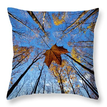 Throw Pillow featuring the photograph Before The First Snow by Mircea Costina Photography