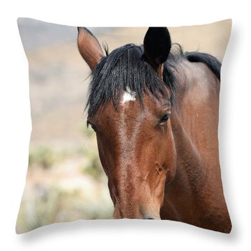 Before The First Snowfall Throw Pillow