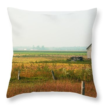 Before The Sweat Throw Pillow by Aimelle