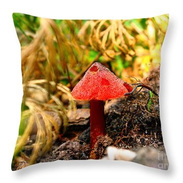 Before The Trip Throw Pillow