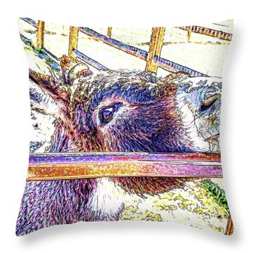 Begging For Attention Throw Pillow