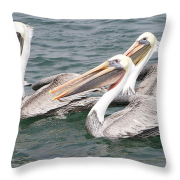 Begging For Food Throw Pillow by Shoal Hollingsworth