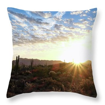 Beginning A New Day Throw Pillow by Monte Stevens