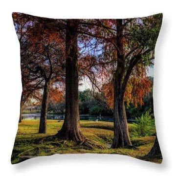 Beginning Of Fall In Texas Throw Pillow
