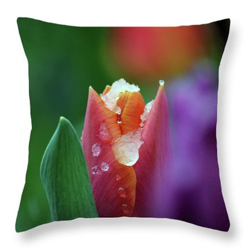 Beginning Of Spring Throw Pillow