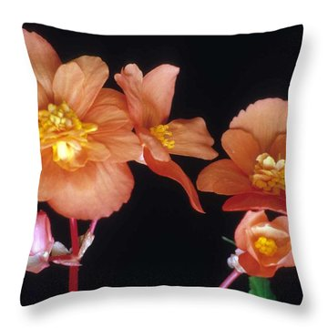 Begonia Buddies Throw Pillow by Laurie Paci