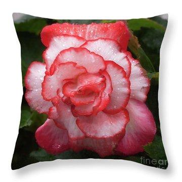 Begonia In The Rain Throw Pillow