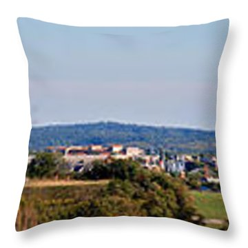 Behind Pats Hill Throw Pillow