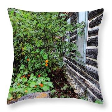 Behind The Dorm At The Clearing Throw Pillow