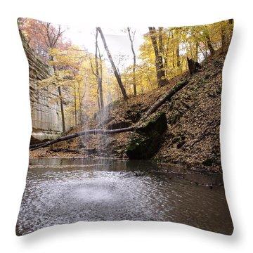 Behind The Falls Throw Pillow by Anna Villarreal Garbis