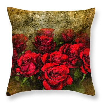 Behind The Glass Throw Pillow by Svetlana Sewell
