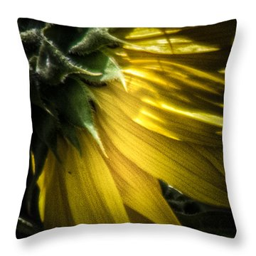 Behind The Petals-sunflower Throw Pillow