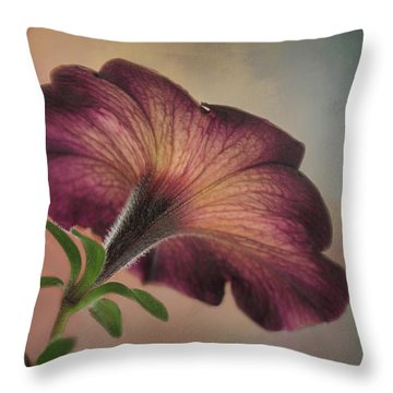 Throw Pillow featuring the photograph Behind The Scene by David and Carol Kelly