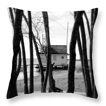Throw Pillow featuring the photograph Behind The Trees by Valentino Visentini