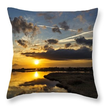 Throw Pillow featuring the photograph Behold by DJA Images