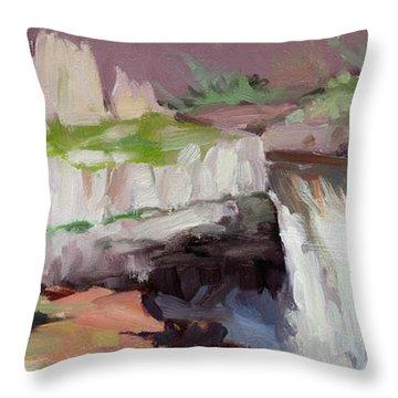 Beholding Palouse Falls Throw Pillow