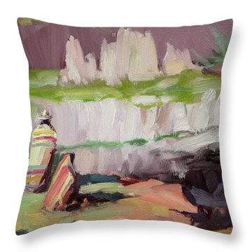 Beholding Palouse Falls Throw Pillow