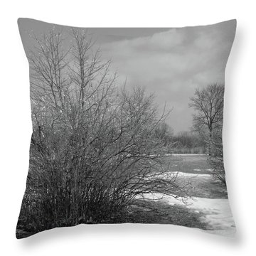 Bejeweled I Throw Pillow by Anna Villarreal Garbis