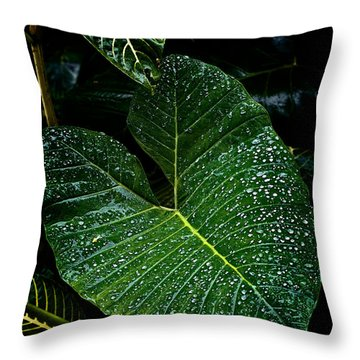 Bejeweled Leaf Throw Pillow by Christopher Holmes