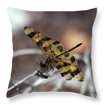 Bejeweled Wings Throw Pillow