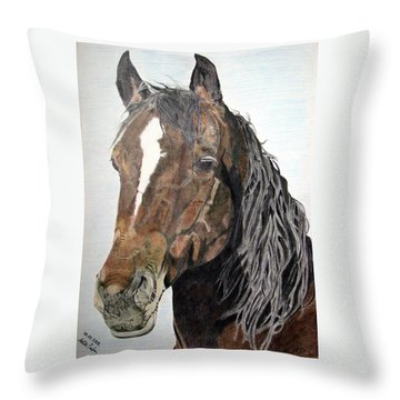 Bela Throw Pillow by Melita Safran